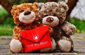 teddy-1338928_1920