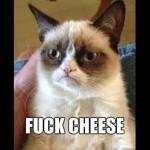 cheesegivesmehivesamirite